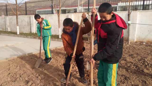 小学开设农耕课程,学生现场学耕种
