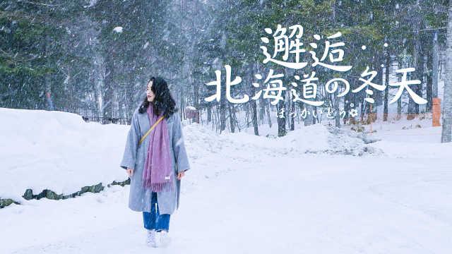 走进雪的国度,邂逅北海道的浪漫