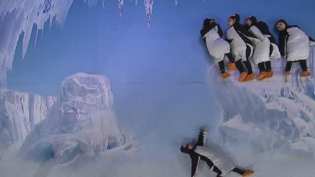 冰川企鹅王国