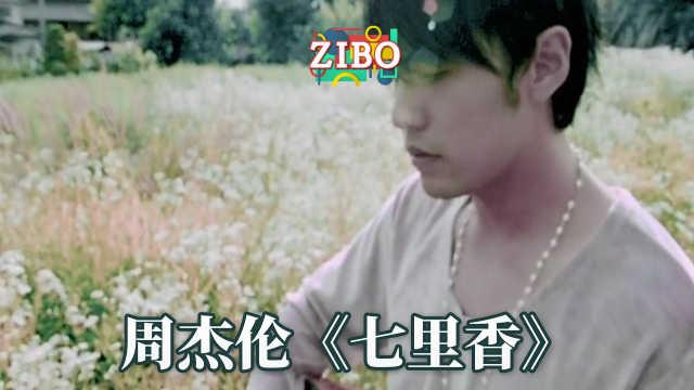 周杰伦《七里香》 | ZIBO