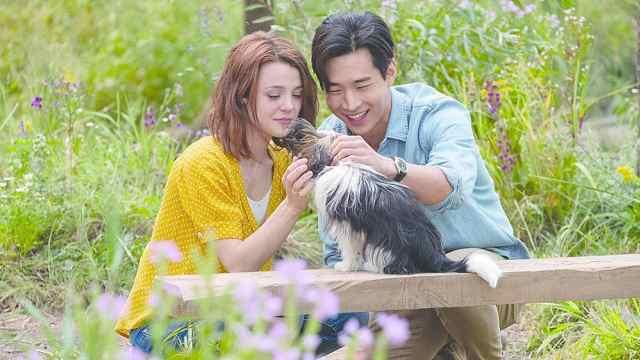 《一条狗的使命》刘宪华秃头首秀