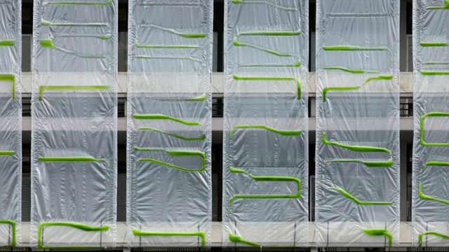 """给建筑披上海藻,让建筑""""呼吸"""""""
