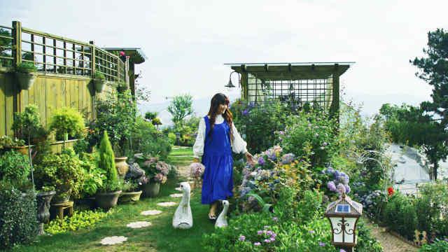 她40岁独自在荒山造1500㎡花园