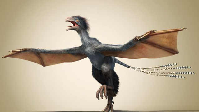 鸟类是恐龙进化来的?有什么依据?