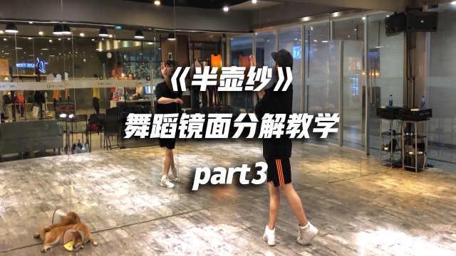 《半壶纱》舞蹈镜面分解教学part3